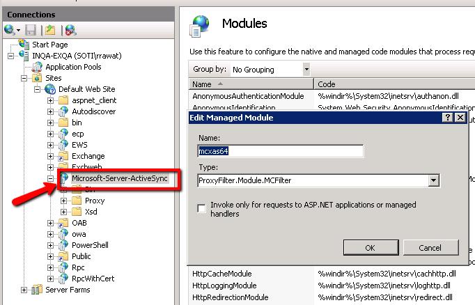 ERG Setup Step 4: Set Up the IIS Module